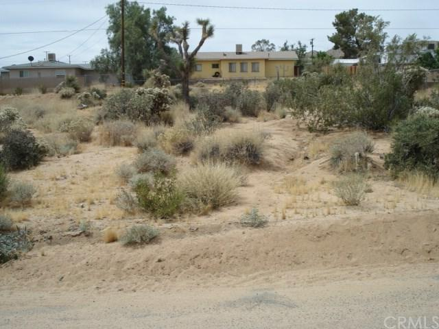 0 El Cajon Drive, Joshua Tree, CA 92252 (#JT19148957) :: Steele Canyon Realty