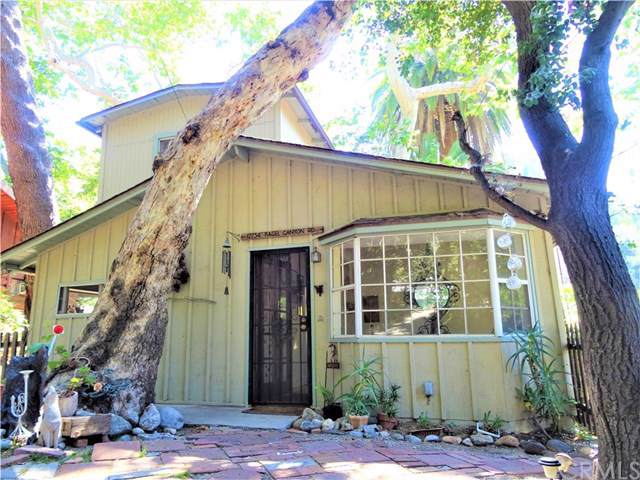 12234 Kagel Canyon Road, Kagel Canyon, CA 91342 (#BB19131927) :: Fred Sed Group