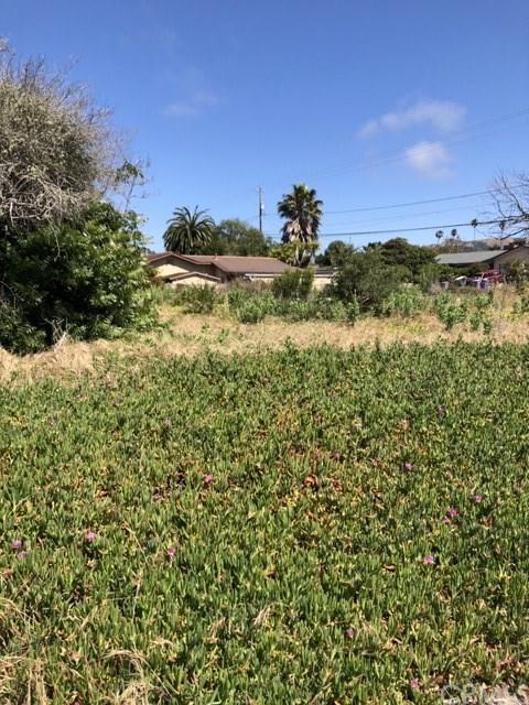 600 Woodland Drive, Los Osos, CA 93402 (#SP19150007) :: Fred Sed Group