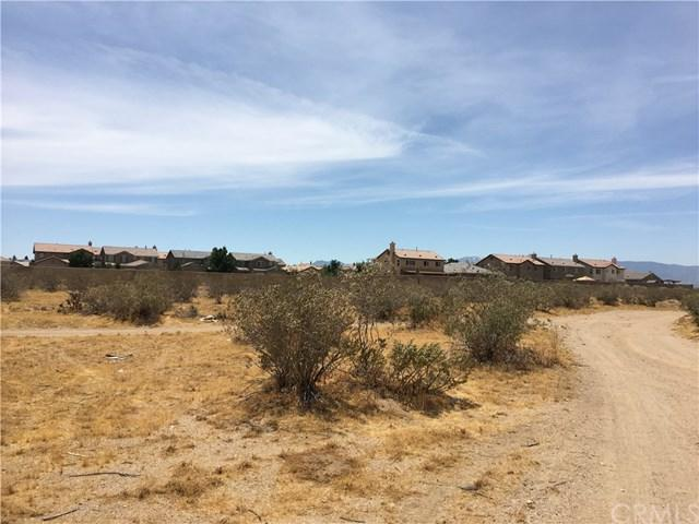11695 Palmdale Road, Victor Valley, CA 92301 (#WS19150497) :: The Marelly Group | Compass
