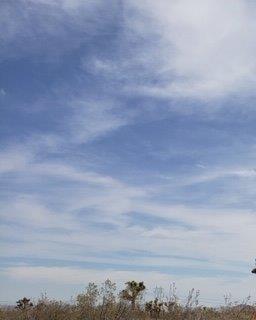 0 Soledad Court, Pinon Hills, CA 92372 (#514741) :: Vogler Feigen Realty
