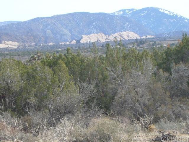 0 Vac/Juniper Hills Rd/Vic 121 S - Photo 1