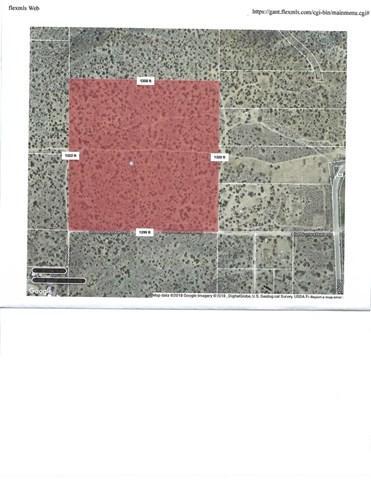 0 Homestead Rd & 126 Ste, Juniper Hills, CA 93543 (#SR19151451) :: The Parsons Team