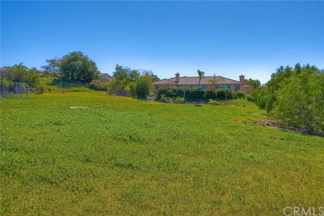 2108 Summer Bloom Lane, Fallbrook, CA 92028 (#ND19151188) :: Allison James Estates and Homes