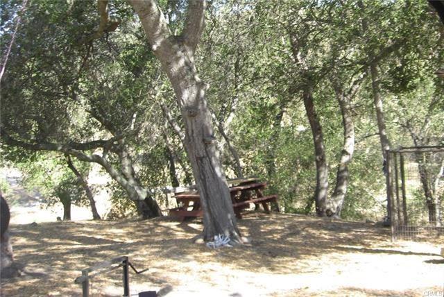 4263 Calf Canyon - Photo 1