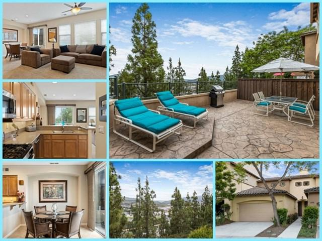 1293 Highbluff Ave, San Marcos, CA 92078 (#190035654) :: eXp Realty of California Inc.