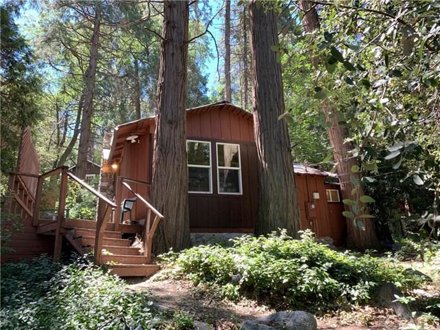 39861 Fern Lane, Forest Falls, CA 92339 (#EV19153357) :: Fred Sed Group