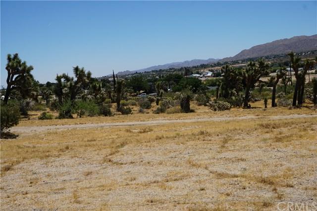 6740 Yucca Vista Road, Yucca Valley, CA 92284 (#JT19126762) :: RE/MAX Masters