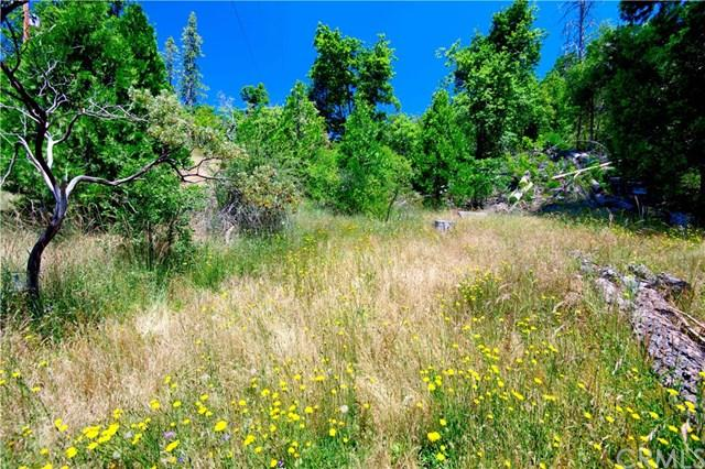 0 Toku Poyah, North Fork, CA 93643 (#FR19154159) :: Fred Sed Group