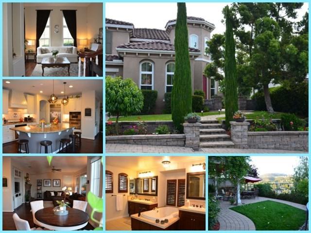 1651 Trenton Way, San Marcos, CA 92078 (#190036069) :: eXp Realty of California Inc.