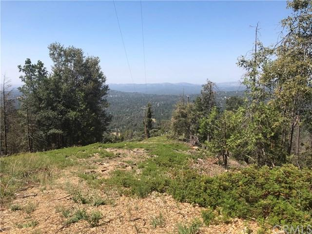 6225 Old Mill Road, Mariposa, CA 95338 (#MP19155163) :: Fred Sed Group