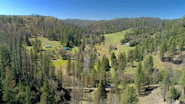 8692 Bull Creek Road, Coulterville, CA 95311 (#PW19156343) :: Sperry Residential Group