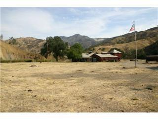 7000 Lewis Creek Road - Photo 1