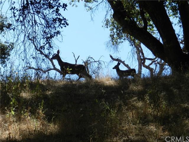 12520 Torreon Road, Atascadero, CA 93422 (#NS19158244) :: RE/MAX Masters