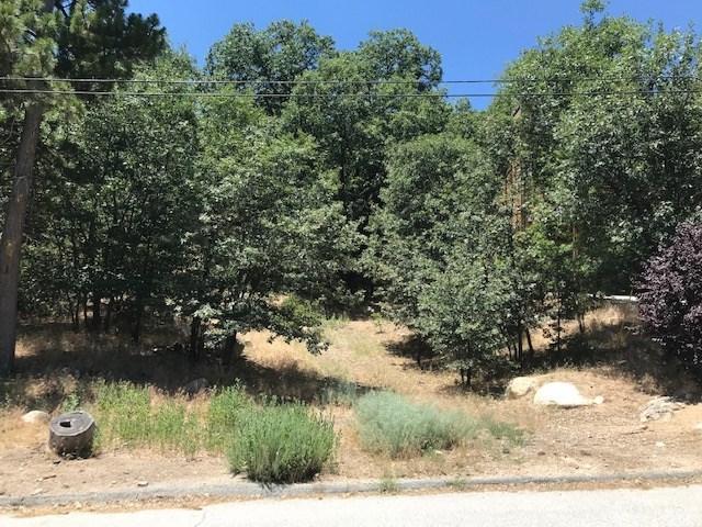 1254 Portillo Lane - Photo 1