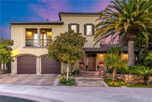 19 Coastal Oak, Newport Coast, CA 92657 (#OC19159971) :: Fred Sed Group