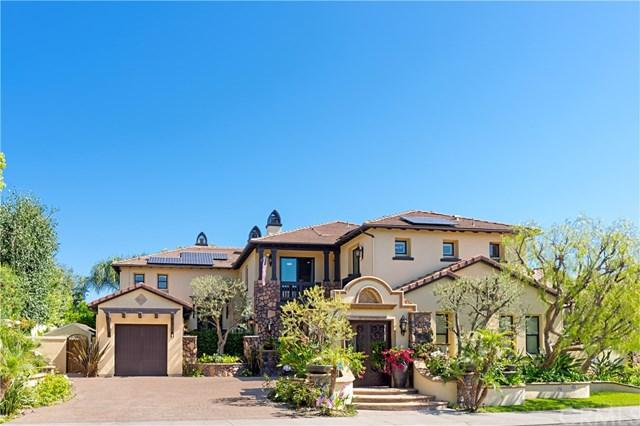 10 Corn Flower Street, Coto De Caza, CA 92679 (#PW19160537) :: Doherty Real Estate Group