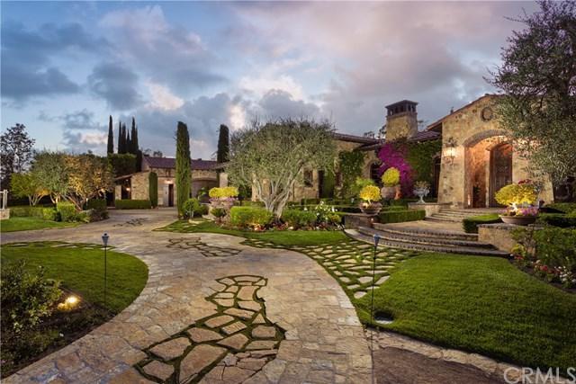 22901 Sonriente Trl, Coto De Caza, CA 92679 (#OC19160877) :: Doherty Real Estate Group