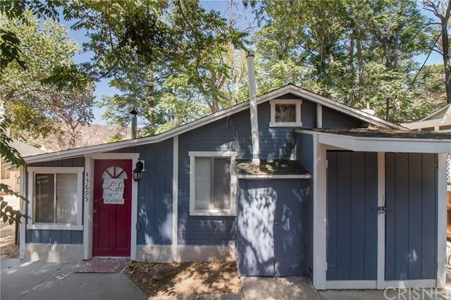 43695 Trail E E, Lake Hughes, CA 93532 (#SR19162487) :: Bob Kelly Team