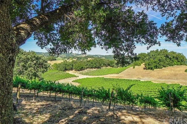 8470 Vineyard Ranch Way, Paso Robles, CA 93446 (#NS19155504) :: Fred Sed Group