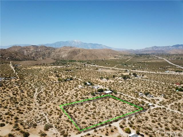 9807 Belden Avenue, Morongo Valley, CA 92256 (#JT19164396) :: Sperry Residential Group