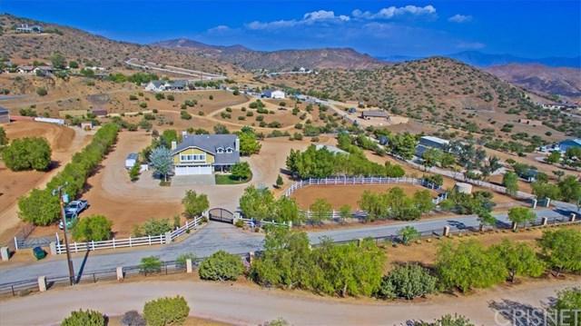 33310 Deerglen Lane, Agua Dulce, CA 91390 (#SR19164561) :: Provident Real Estate