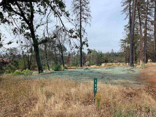 137 Coast Range Lane, Paradise, CA 95969 (#SN19164657) :: The Laffins Real Estate Team