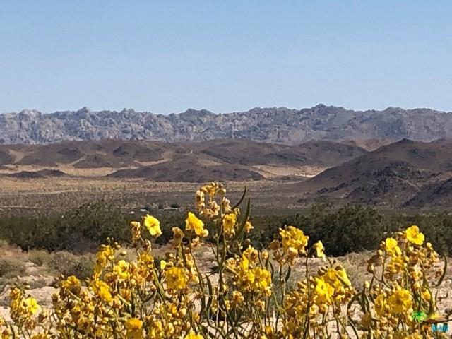 632 Sonora Way, Joshua Tree, CA 92252 (#19469842PS) :: Powerhouse Real Estate