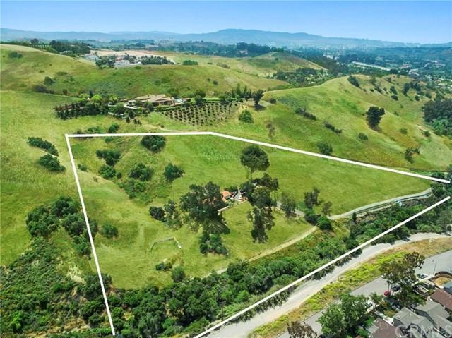 29372 Trabuco Creek Road, San Juan Capistrano, CA 92675 (#LG19165355) :: Berkshire Hathaway Home Services California Properties