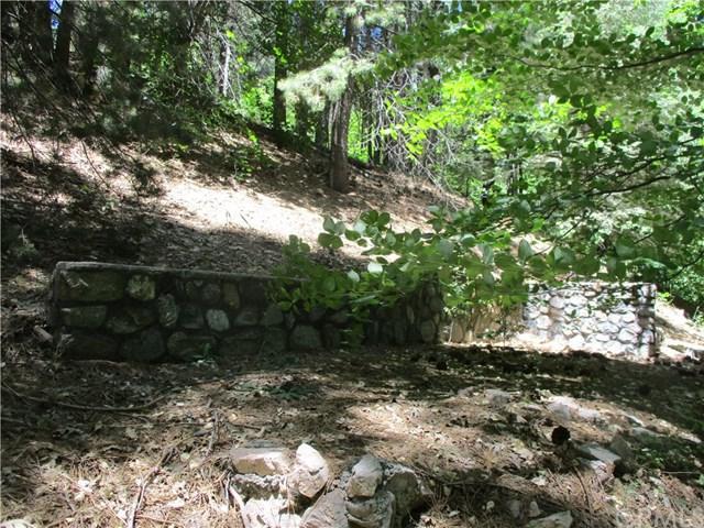 878 Cottage Grove Road, Lake Arrowhead, CA 92352 (#IG19165403) :: Fred Sed Group