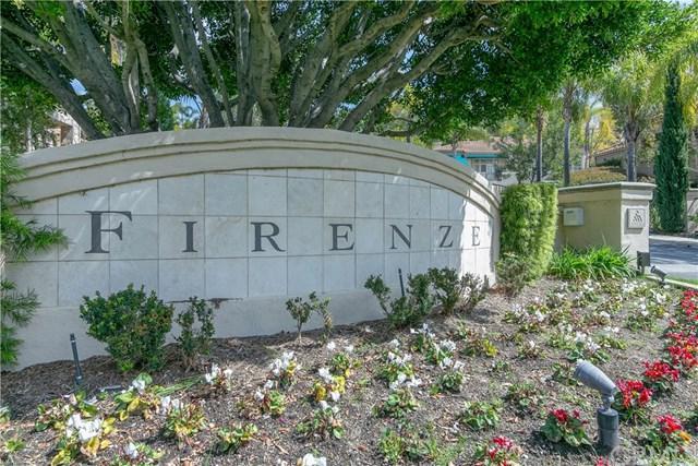 480 S San Vicente Lane #8, Anaheim Hills, CA 92807 (#WS19165516) :: Fred Sed Group
