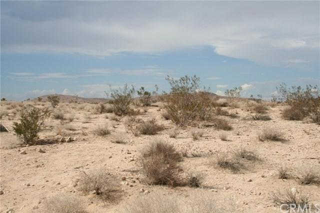 0 Amboy, 29 Palms, CA 92277 (#JT19165546) :: Fred Sed Group