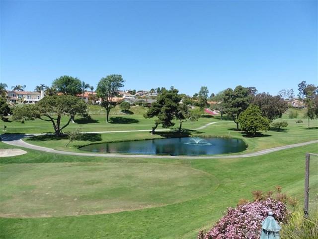 1004 Santa Helena Park Ct, Solana Beach, CA 92075 (#190038684) :: Team Tami