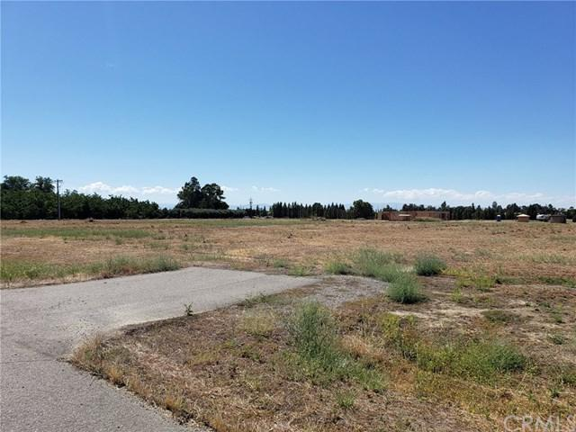 6720 County Rd 21, Orland, CA 95963 (#SN19165361) :: Fred Sed Group