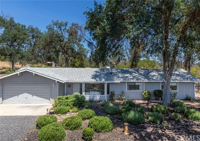 4494 Bridgeport Drive, Mariposa, CA 95338 (#MP19165866) :: Fred Sed Group