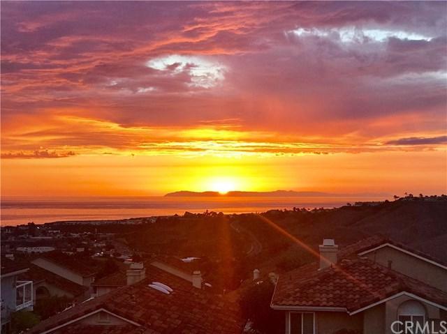 910 Camino Ibiza, San Clemente, CA 92672 (#OC19166730) :: Doherty Real Estate Group