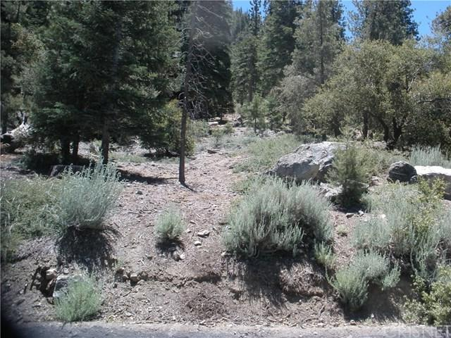 15020 Chestnut Drive, Pine Mountain Club, CA 93222 (#SR19167978) :: Pam Spadafore & Associates