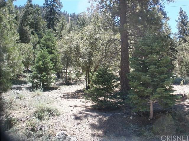 15024 Chestnut Drive, Pine Mountain Club, CA 93222 (#SR19167991) :: Pam Spadafore & Associates