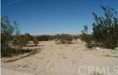 0 Sunfair Road, Joshua Tree, CA 92252 (#CV19168072) :: Allison James Estates and Homes