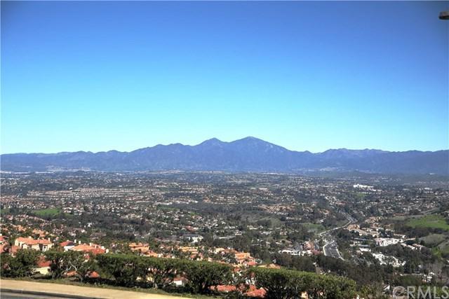 30952 Ariana Lane, Laguna Niguel, CA 92677 (#OC19167444) :: Doherty Real Estate Group