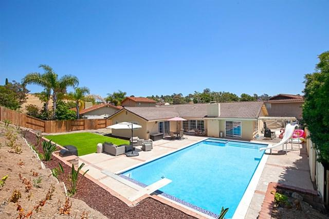 3904 Feather Rock Ct, Bonita, CA 91902 (#190039147) :: Z Team OC Real Estate