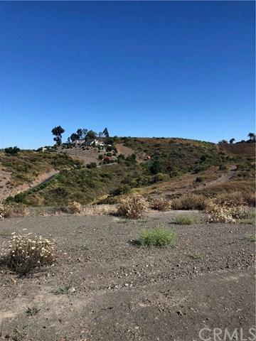 0 Via De Larga Vida, Temecula, CA 92590 (#SW19168751) :: Steele Canyon Realty