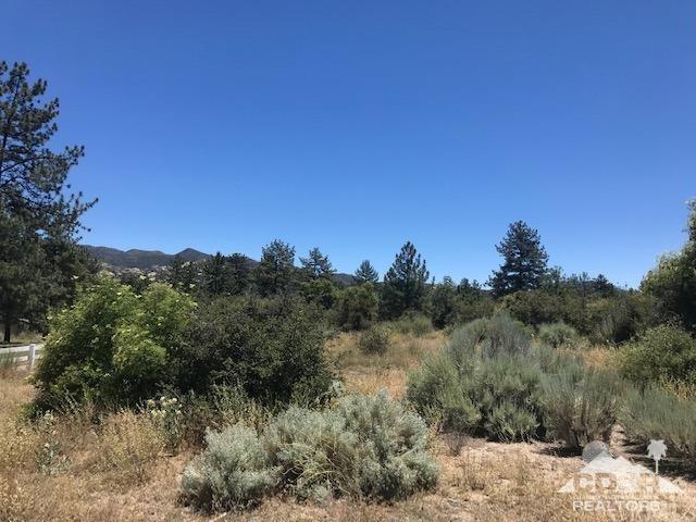 65 Devils Ladder, Mountain Center, CA 92561 (#219019327DA) :: J1 Realty Group