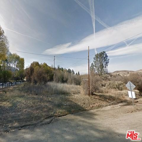 14218 Elizabeth Lake Road, Lake Elizabeth, CA 93532 (#19489572) :: Fred Sed Group
