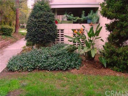 41 Calle Aragon A, Laguna Woods, CA 92637 (#OC19169443) :: Mainstreet Realtors®