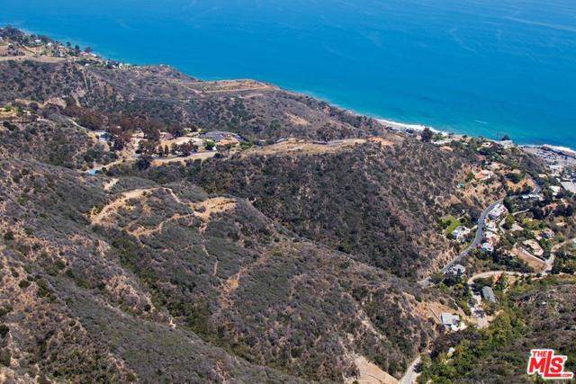 20715 Las Flores Mesa Drive, Malibu, CA 90265 (#19489594) :: The Marelly Group | Compass