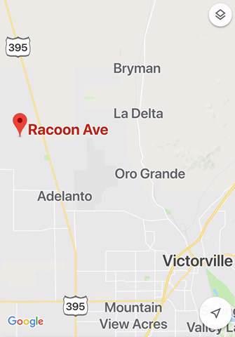 0 Racoon Road - Photo 1