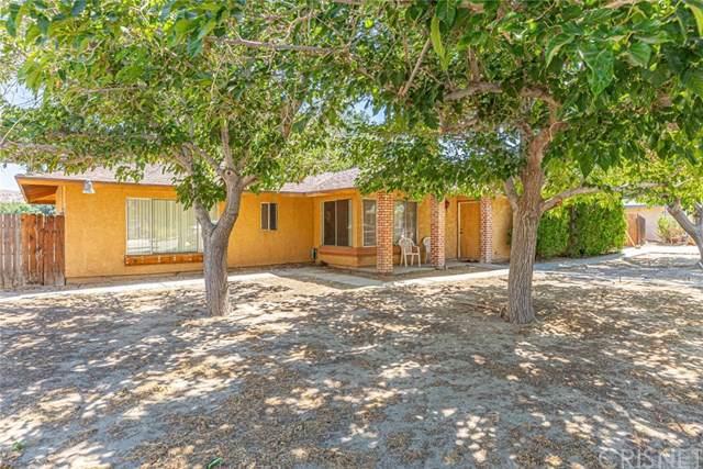 15324 Newmont Avenue, Lake Los Angeles, CA 93535 (#SR19167388) :: DSCVR Properties - Keller Williams
