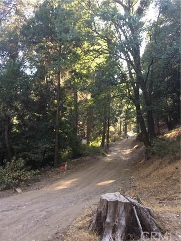 0 Burnt Mill Canyon Road Area, Cedarpines Park, CA 92322 (#EV19168831) :: Powerhouse Real Estate