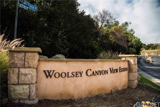 9272 Rocky Mesa Pl., West Hills, CA  (#SR19167923) :: Bob Kelly Team